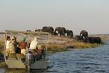 Zambezi Queen